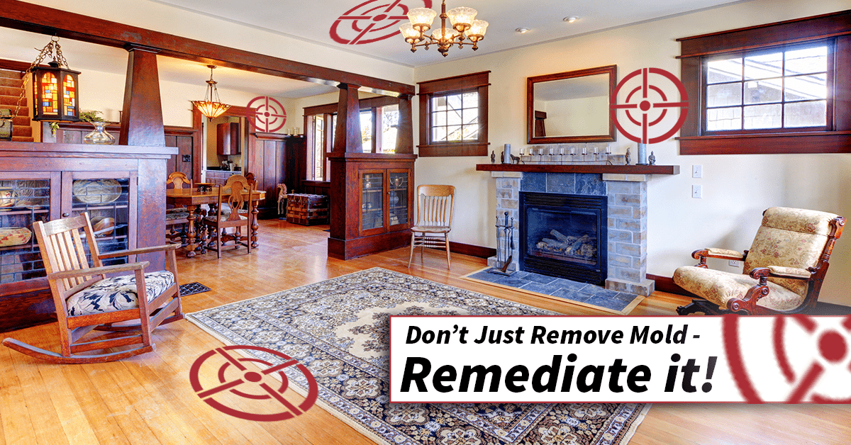 Don't Just Remove Mold, Remediate it!