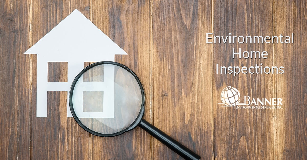 Environmental Home Inspection